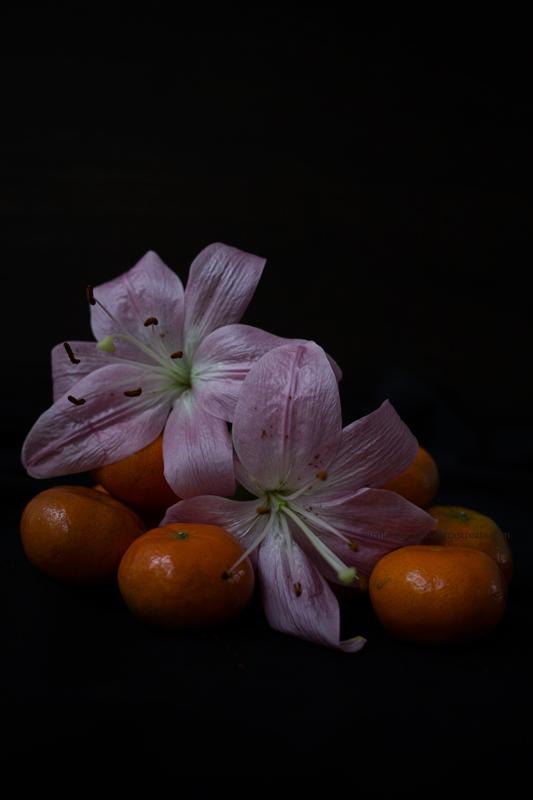 MandarinesLys19-9-17-3